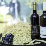 vinoskop 10